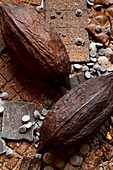 Schokoladenstilleben mit zwei Kakaobohnen (bildfüllend)