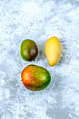Three mangoes of different varieties, is laid out in a triangle on a concrete background
