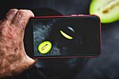 Hand hält Handy mit Foto von Cantaloupemelone