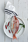 Uncooked red fish lying on plate near small red pepper and parsley sprig on white wooden tabletop