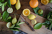 Organic oranges and lemons with a knife on a rustic wooden board