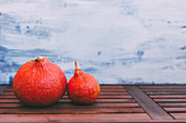 Orange ripe vegetables on wood planks near white and blue wall