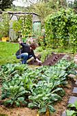Frau arbeitet im Gemüsegarten