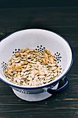 Dried pumpkin seeds in a colander