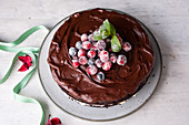 Chocolate cake with Frosted Berries