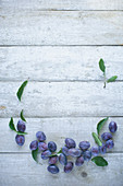 Damsons with leaves on a rustic white wooden surface