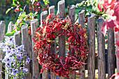Herbstkranz mit Hagebutten und wildem Wein am Zaun