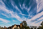 Aircraft contrails and cirrus clouds