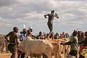 Jumping of the Bull ceremony