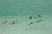 Tourists float in the Dead Sea