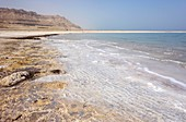 Salt deposits on the shore of the Dead Sea, Israel