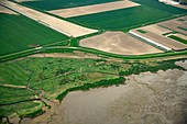 Coastal farmland, aerial photograph