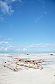 Ngalawa boat on a beach, Zanzibar