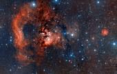 Cederblad 214 Nebula
