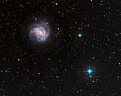 Galaxy M 83 in Hydra
