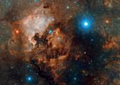 Deneb and the North America Nebula