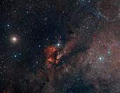 RCW 38 Star Cluster in Vela