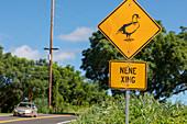 Hawaiian goose crossing sign