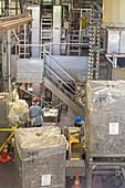 Macadamia nut factory