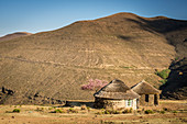 Two traditional huts in front of a mountain, Lesotho