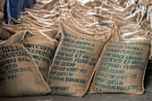 Bags of arabica coffee beans ready for export, Ethiopia