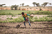Worker tilling the ground, Meki Batu, Ethiopia