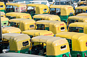 Auto rickshaws lined up in downtown New Delhi, India