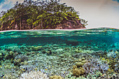 Split level view of shallow coral reef and island