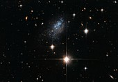 Galaxy ESO 376-16, HST image