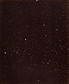 Part of the constellation of Cygnus, 1880s