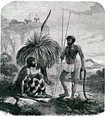 19th Century Australian snake hunters, illustration