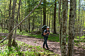 Hiker walking in forest, Michigan, USA