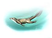 Castorocauda prehistoric aquatic mammal, illustration