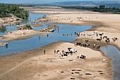 Mandrare river scene
