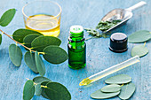 Essential oil of Eucalyptus