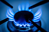 Lit gas rings on a domestic hob
