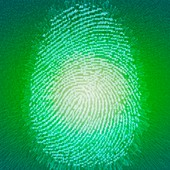 Digital fingerprint, illustration
