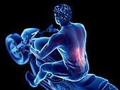 Illustration of a biker's back muscles