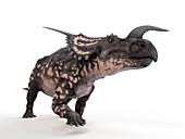 Illustration of a einiosaurus