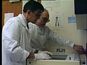 Scientists reviewing DNA test results
