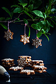 Lebkuchen-Weihnachtssterne