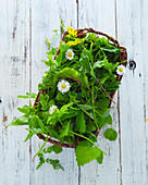Wild herbs in a basket