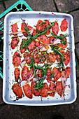 Tomato confit on a tin