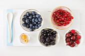 Bowls with garden berries - raspberries, blueberries, blackcurrants, redcurrants and gooseberries