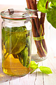 Homemade basil spice vinegar