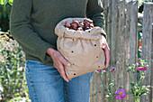 Frau bringt Papiertüte mit Narzissen - Zwiebeln zum einpflanzen