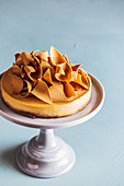 Caramelised white chocolate and cardamom cheesecake
