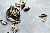 Raw kiwi mussels in copper plate