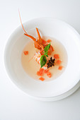 Ice cold tomato consommé with crayfish