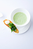 Wild herb soup with toasted bread